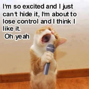 ... cat is funny as it sings i m so excited and i just can t hide it i m