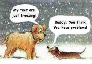 quotes quote winter funny quotes humor winter quotes Laugh, Funny ...