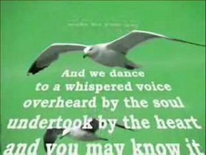 Tribute To Fly Jonathan Livingston Seagull - Intro Teaser Video