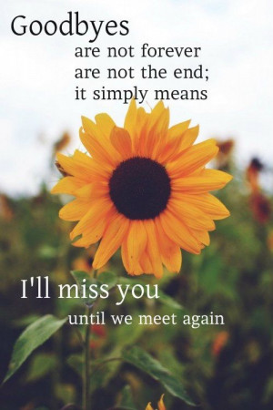 added the quotes to fit the sunflower theme (BC Celebration)