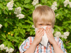 ... decide which options are best to help your child deal with allergies