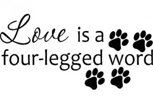 ... Rooms, Quotes Wall, Quote Wall, Quotes Sayings, Wall Stickers, Animal