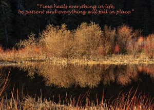 time-heals-everything-quote-saying-pic-life-good-quotes-pictures ...