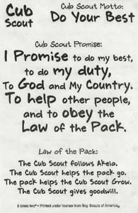 Cub Scout Sayings