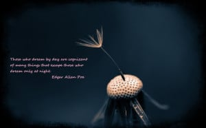 Download Wallpaper on Dreams with Quote by Edgar Allan Poe
