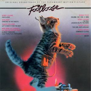 Lustige Katzenbilder begeistern im Internet Millionen. Auf ...