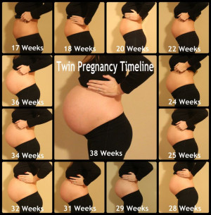 Twin – pregnancy – pregnant – twins – fraternal twins ...