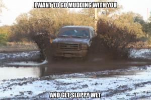 Generate a meme using mudding