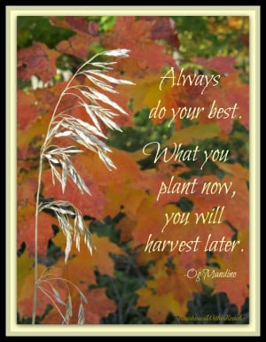 Autumn Quotes For Kids1