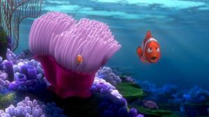 Finding-Nemo-finding-nemo-3561558-853-480.jpg