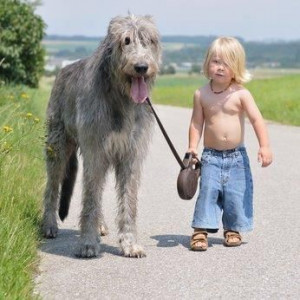dog's purpose (as told by a 6-year-old) - Mommy Has A Potty ...