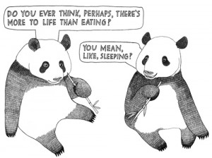 cute, drawing, eat, funny, joke, life, panda, pandas, quote, sleep