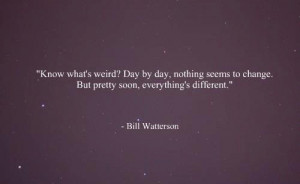 Bill Watterson Quotes (Images)