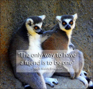 Enjoy these Great Quotes on Friendship by Famous People.