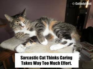 Funny Sarcastic Ecard