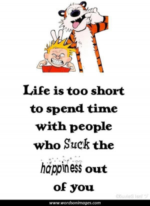 Calvin hobbes quotes