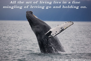 All the art of living lies in a fin mingling of letting go and holding ...