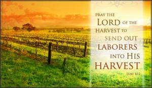 autumn harvest ecard send free personalized autumn cards online