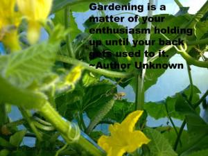 Funny garden quotes #gardening