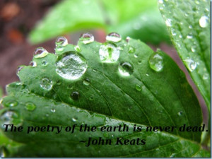 Earth Day Quotes And Sayings Earth day quot.