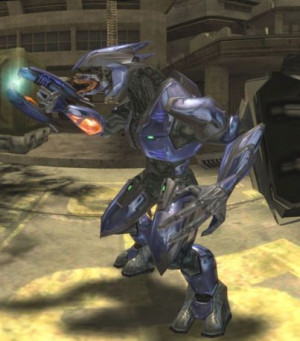 Talk: Sangheili/Quotes