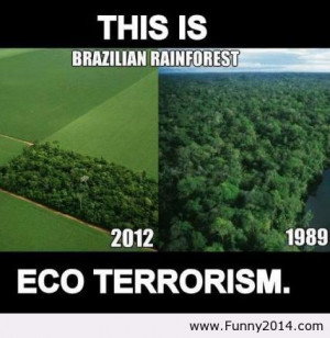 help save the rainforest by making sure your palm oil coffee and sugar ...