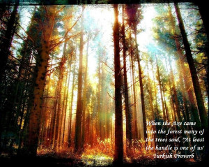 When the axe came into the forest many of the trees said,