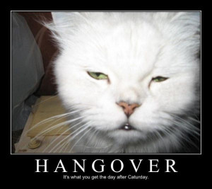 Hangover Funny pictures