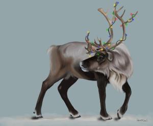 reindeer real christmas reindeer start of a real christmas reindeer ...