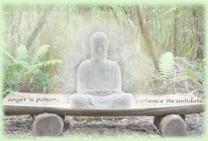 anger is poison quotes, patience quotes with Buddha picture