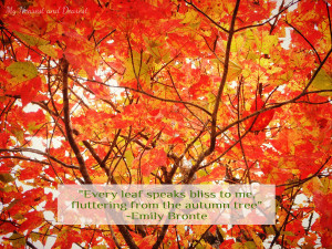 ... fall quotes including this one about autumn leaves by Emily Bronte