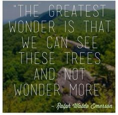 The greatest wonder is that we can see these trees and not wonder ...
