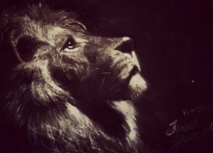 Lion Quotes Strength Lion quotes strength for lion