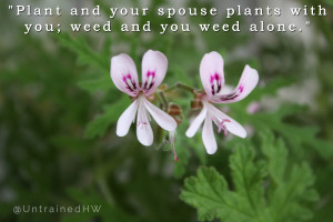 Plant and your spouse plants with you; weed and you weed alone ...