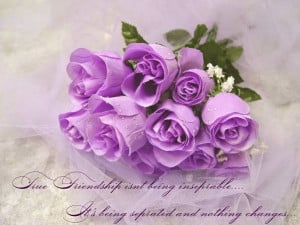 flowers quotes friendship flowers quotes friendship flowers quotes ...