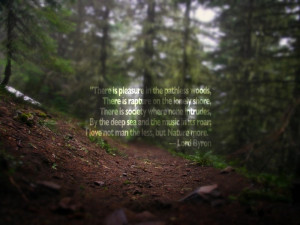 into the woods quotes image desktop into the woods quotes image ...