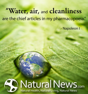 Water, air, and cleanliness are the chief articles in my pharmacopoeia ...