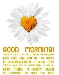goodmorning #sunshine #awesome