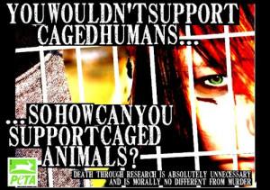 Animal Cruelty Campaign - animal-rights Photo