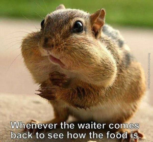 Go Back > Gallery For > Funny Waiter Quotes