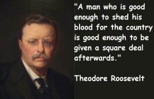 theodore roosevelt quotes 4