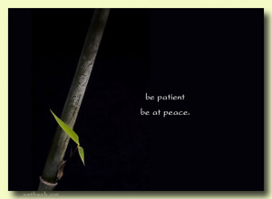 be patient be at peace venerable wuling path to peace