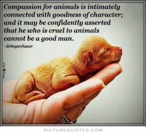 Quotes Animal Quotes Animal Rights Quotes Animal Cruelty Quotes Animal ...