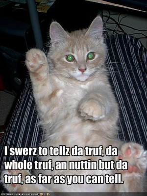 Some old lolcats