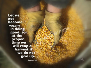 Great Farm Quotes