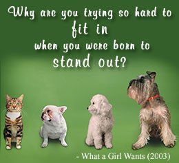 What a Girl Wants movie quote on positive thinking