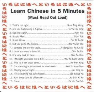 chinese, english, funny, hilarious, in 5 minutes, learn
