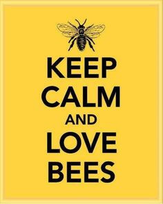 ... honey bees bees things bees honey calm quotes queens bees bumble bees