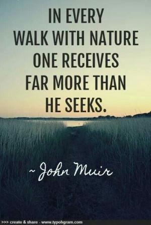 John Muir- tree saviour