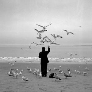 Aquí hay algunas hermosas fotografías en blanco y negro , no sólo ...